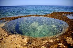 Tidal Pool, Kaena Point State Park, Oahu, Hawaii This is an easy hike and just 15 minutes from Makaha Valley Plantation. Go early in the day and take water with you.