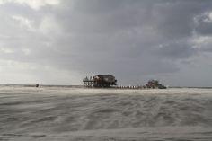 Narrenfreiheit an der Nordseeküste http://reisegezwitscher.de/reisetipps-footer/2035-st-peter-ording