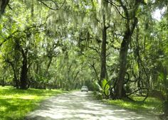 Leaving Princess Place Preserve in Palm Coast is like leaving the past behind, but its beauty will remain with you. Flagler Beach, Florida
