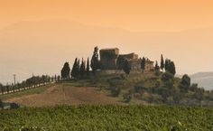 Wine country - #Italy