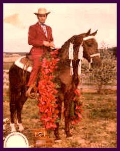 Missouri Foxtrotters - Missouri Foxtrotters A to Z (My Horses Grandpa)
