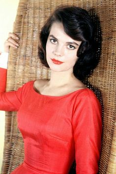 Natalie Wood in red dress seated in wicker chair Poster Vintage Hollywood, Hollywood Glamour, Hollywood Actresses, Classic Hollywood, Actors & Actresses, Classic Actresses, Hollywood Studios, West Side Story, Natalie Wood
