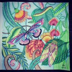 Coloured By Ann Jorsh Rabinowitz.
