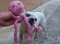 juguetes para perros caseros baratos