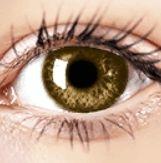 Air Optix Colors - Brown - Prescription Colored Lenses Prescription Contact Lenses, Prescription Colored Contacts, Contact Lens Solution, Halloween Contacts, Color Lenses, Eye Color, Gemstones, Colors, Robin