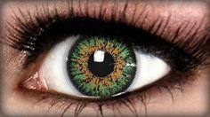 Diamond Jade Green Contact Lenses on ExtremeSFX.com