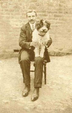 Adorable vintage photo of smiling dog on the lap of his owner.