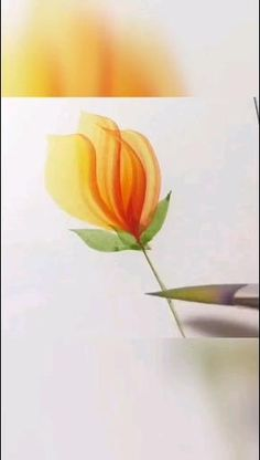 Cute Flower Drawing, Beautiful Flower Drawings, Flower Art, Beautiful Flowers, Watercolor Art Landscape, Watercolor Artwork, Watercolor Flowers, Canvas Painting Tutorials, Watercolor Painting Techniques