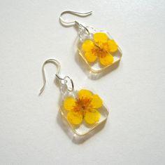 Yellow Buttercups - Charmed Real Flower Earrings