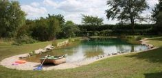 Build a Natural Swimming Pond