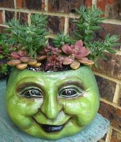 Head Planter with Succulents, I used this one too but he was brown and I dusted the facepot with antique gold, but love the green version here too! Cathy T #facepots