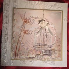 Beautiful Birdcages CDROM