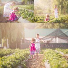 Strawberry Picking mini sessions, Silver Lakes, South Africa. Child Photographer Pretoria, Gauteng Child Photographer, Child Photographer Pretoria East, Johannesburg Child Photographer