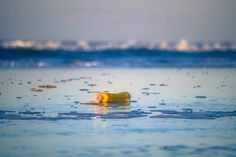 #lifesabeach #plasticbottle #sea #beach #terschelling #vscofilm #vsco #vscogrid #igersholland #contemporaryphotography #instadaily #neverstopexploring #calmversation #oftheafternoon #contemporary #beachlife #mooinederland #super_holland #Loves_Netherlands #vscomafia #dutch_connextion #igfriends_valledaosta #wanderlust #vscocam #nothingisordinary_ #holland_photolovers #waves #seascape