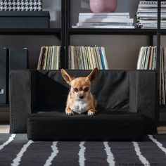 IKEA - LURVIG, Cat/dog bed, black, You can quickly and easily create an even larger sleeping space by folding out the seat cushion. For cats and dogs. Ikea Bed, Cat Dog, Black Bedding, Keep It Cleaner, Dog Bed, Seat Cushions, Corgi, Ikea Chat, Dog Stuff