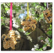 Spring Crafts For Kids: A Bird Feeder You Can Make At Home