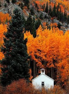 autumn colors create a perfect backdrop for a white cottage