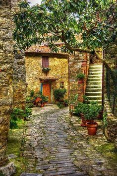 Italian House or villa