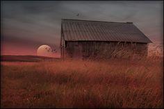 Landromantik,,, von Veronika Pinke