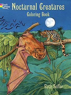 Nocturnal Creatures Coloring Book (Dover Nature Coloring Book) by Ruth Soffer http://www.amazon.com/dp/0486403629/ref=cm_sw_r_pi_dp_Uc7Bvb01C9Z0J