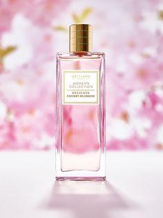 Delicate Cherry Blossom