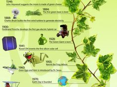 40 Super-Cool Infographics You Absolutely Have To See  //Green through the ages