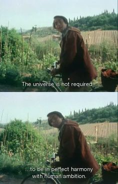 Carl Sagan, we lost a shining star. Carl Sagan, Cosmos A Personal Voyage, Brave, Byron Katie, Movie Lines, Science, Film Quotes, Cinema Quotes, Quotes Quotes