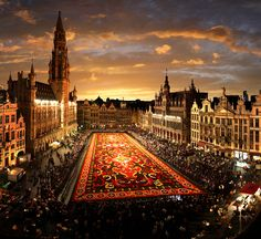 the Flower Carpet - Brussels, Belgium