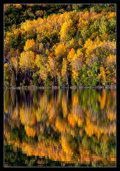 Fall colors at Fumee Lake, Michigan