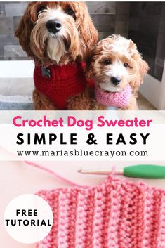 Crochet Basic Dog Sweater - Free Step by Step Tutorial - Maria's Blue Crayon - - This easy step by step tutorial will help you crochet a dog sweater in any size you need! Whip one up for all your dog friends big and small! Crochet Dog Sweater Free Pattern, Dog Coat Pattern, Crochet Dog Patterns, Knit Dog Sweater, Large Dog Sweaters, Pet Sweaters, Crochet Dog Clothes, Blue Crayon, Dog Clothes Patterns