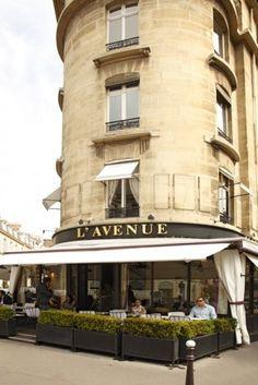 Restaurant l'Avenue, 41 Avenue Montaigne, Paris, France