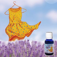 Essential oils that repel moths from your clothes and textiles. Freshens the wardrobe naturally with a pure plant smell. Use against silverfish and pantry moth. Moth Repellent, Blue Glass Bottles, Pure Essential Oils, Lemon Grass, Herbalism, Fragrance, Pure Products, Natural, Free