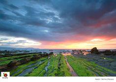 La costa de Vizcaya. (Barrica)