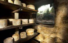 Descubriendo las entrañas de un quesu en Cabrales #ParaísoNatu http://blgs.co/pE92Oy