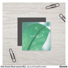 Shop Pale Green Plant Leaves Nature Feel Business Card created by LosCrazyAvocados. Green Organics, Love Natural, Nature Plants, Green Plants, Business Cards, Plant Leaves, Stickers, Prints, Lipsense Business Cards