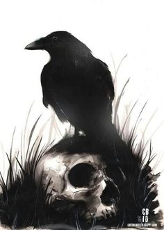 black and white, skull, raven, Poe