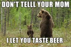 These camping memes are motivational, thought-provoking, quite a few will make you chuckle. These camping memes will make you want to go camping! Funny Bear Pictures, Cute Pictures, Crazy Pictures, Animal Memes, Funny Animals, Cute Animals, Animal Humor, Animal Quotes, Animal Pics