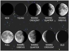 Phases of the Moon (C2, W10)