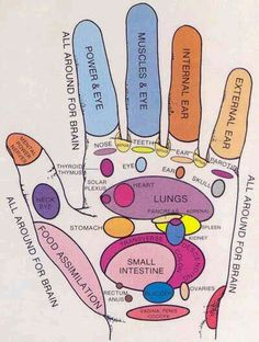 The hand has important connections to the whole body.  #reflexology Health Tips, Health And Wellness, Health Fitness, Reflexology Massage, Reflexology Points, Foot Reflexology Chart, Lymph Massage, Acupressure Points, Alternative Health