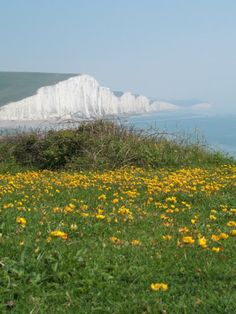 Picture of Seven Sisters in Sussex, view out across Cuckmere haven.