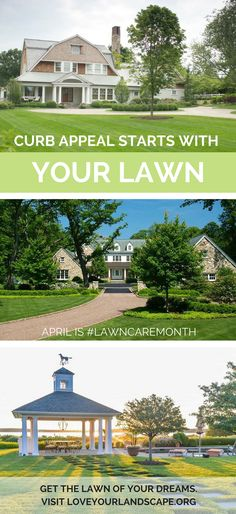 TOP TIPS for a lush lawn
