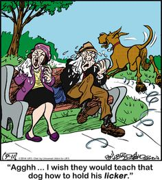 Marmaduke by Brad Anderson Thursday, September 2014 Funny Dog Jokes, Funny Dogs, Funny Animals, Dog Quotes, Animal Quotes, Cartoon Dog, Dog Cartoons, Dog Comics, Jack Russell Dogs