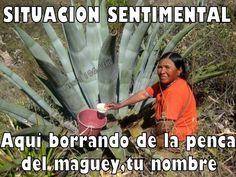 Mexican humor, español, chiste, memes en español