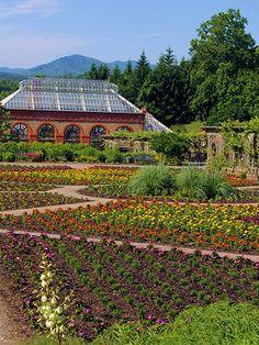 Biltmore Garden-N. C.