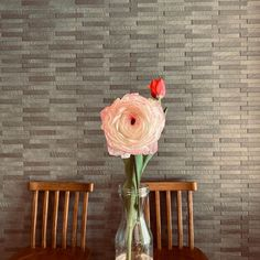 #チューリップ #ラナンキュラス だったはず笑 #flowerstagram  #花のある暮らし  #flower  #flowerphotography Chair, Illustration, Furniture, Home Decor, Illustrations, Stool, Interior Design, Home Interior Design, Arredamento