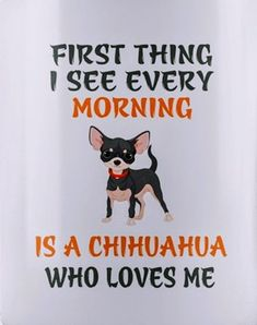 Effective Potty Training Chihuahua Consistency Is Key Ideas. Brilliant Potty Training Chihuahua Consistency Is Key Ideas. Chihuahua Quotes, Chihuahua Love, Chihuahua Puppies, Dogs And Puppies, Chihuahuas, Doggies, White Chihuahua, Dog Quotes, I Love Dogs