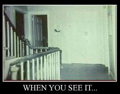 32 Outrageous When You See It Photos