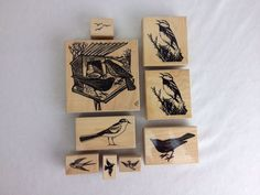 Nice Used DP Artworks and Stamp Cabana Bird Rubber Stamp Set of 9 Varying Sizes  #DPArtworksandStampCabana #Background