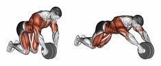 Preparamos um guia completo sobre o exercício com aroda abdominal. Veja a execução correta, cuidados e como otimizar os resultados. O trabalho com os músculos do tronco é uma das bases para o desenvolvimento muscular saudável e funcional. Os chamados músculos do core, são de fundamental importância para a construção de um físico mais denso …