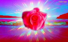✣...Your life should reach to others.    Your Blissfulness, your Benediction, your Ecstasy should not be contained within you like a seed.   It should open like a Flower and spread its Fragrance to All.   This is real Compassion, real Love,   sharing your Enlightenment,   sharing your Dance of the Beyond.....  ✣ Osho  arT © e11en♥ vaman  www.facebook.com/ellenvaman